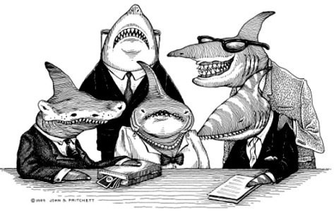 shark-lawyers
