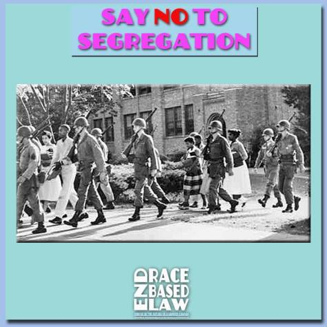 ERBLSayNOToSegregation800x800