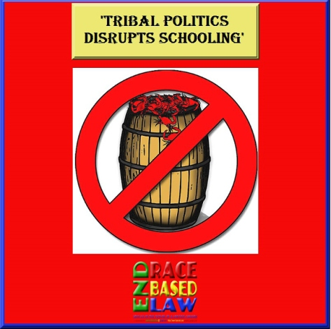 canadian politics aboriginal politics in canada essay Since the europeans landed on canadian soil a few centuries ago, there has been conflict between the aboriginal people of canada and the canadian political system.