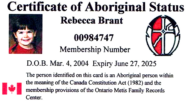 Sample Metis Status Card