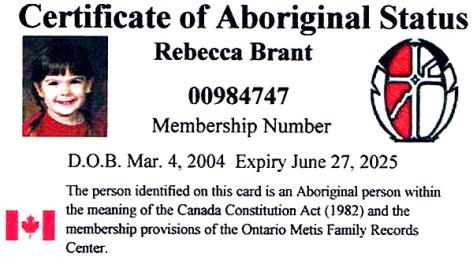 Sample Metis Status Card