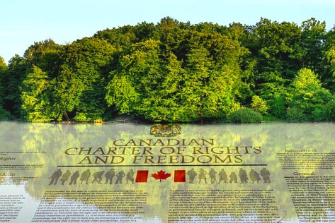 firstnations-constitution