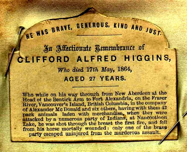 Higgins2