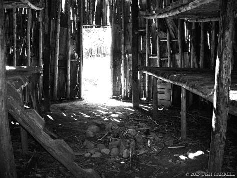 Longhouse(TishFarrell)(600)