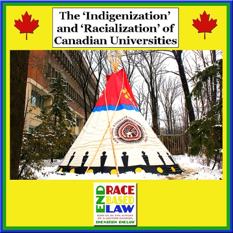 erbltheindigenizationandracializationofcanadianuniversities600x600