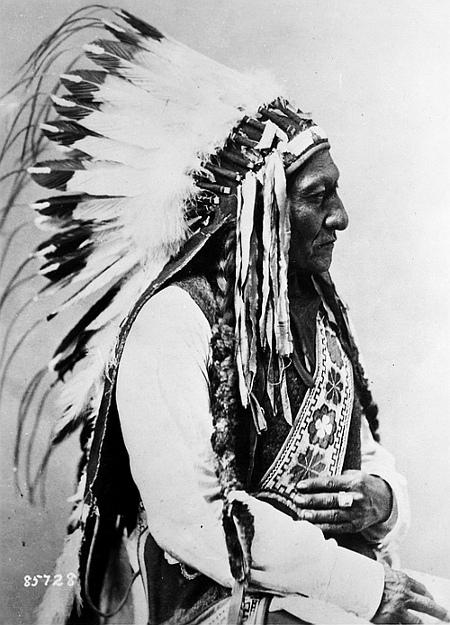 Sitting Bull (Tatonka-I-Yatanka), a Hunkpapa Sioux, 1885